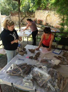 Organizing and cataloging the remains