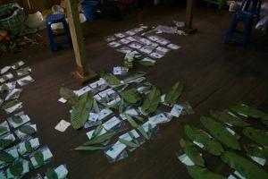 More leaf processing!