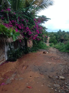 The road leading to the hostel
