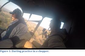 Darting in chopper